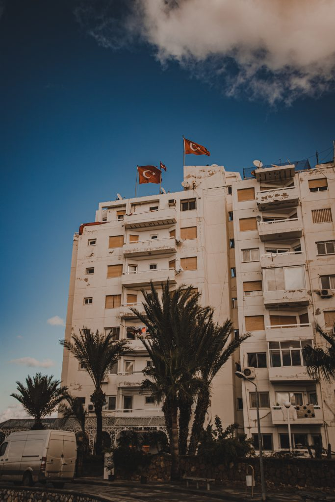 cypr polnocny